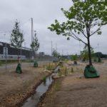 Den Grønne Kile med nyanlagt bæk og 'ny beplantning, stiforbindelser og grønne ådalslandskaber'