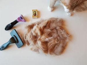 Virkelig meget pels