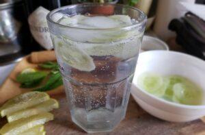 Hendrick's Gin - Tonic Water - Lime og Agurk
