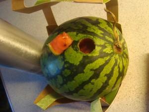 Vandmelon
