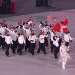 Det danske hold
